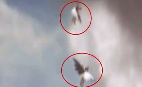 Îngerii au apărut pe cer în Brazilia