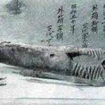 Sirene în Japonia