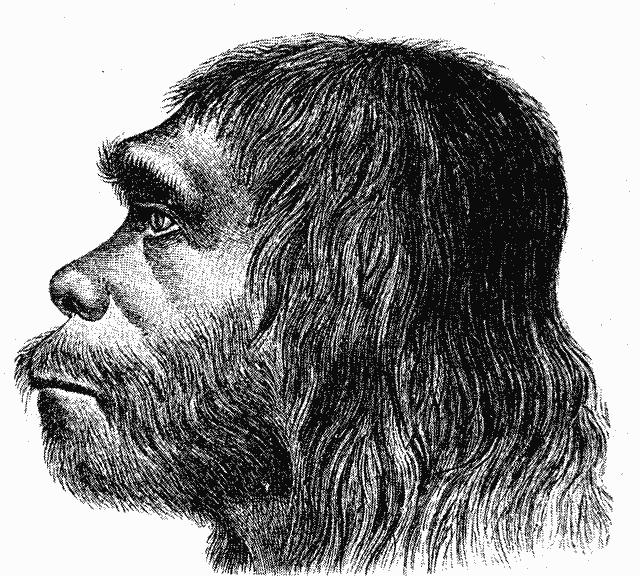 Omul de Neanderthal este strămoşul nostru?