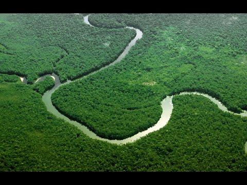 Evidenţa unor oraşe gigantice în Amazonia