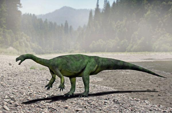 Un mare dinozaur descoperit în Africa de Sud